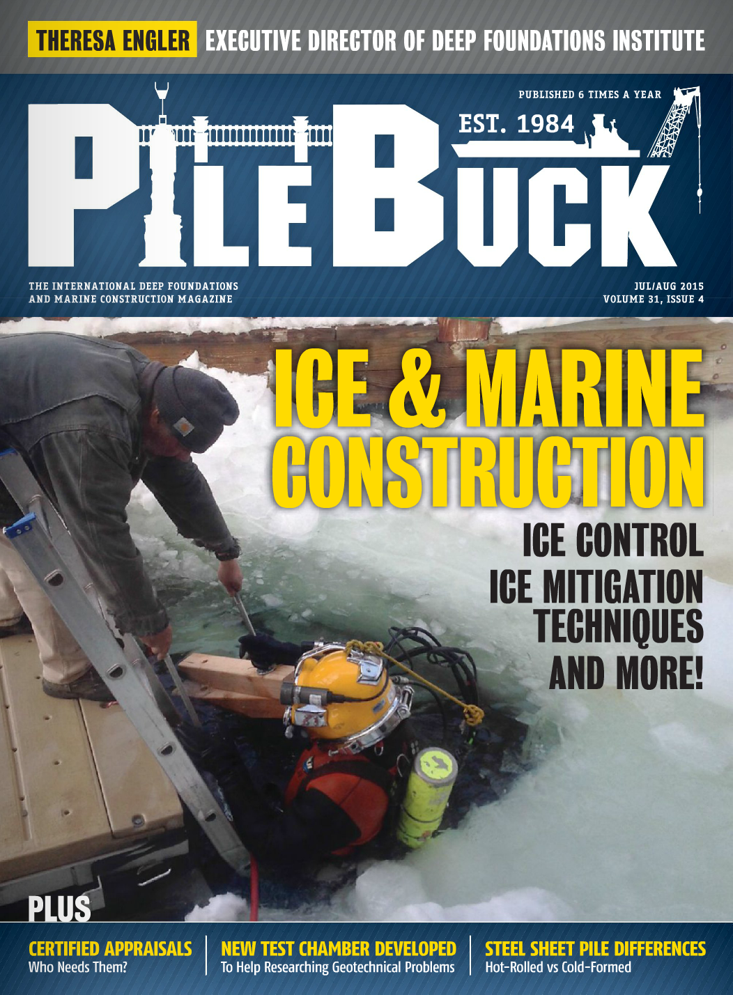 Issue 31-4 - Jul/Aug 2015