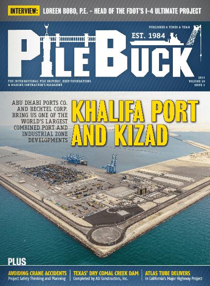 Issue 29-3 - May/Jun 2013