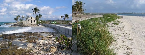 Construction should not be allowed where it affects coastal processes - Cat Island. Dune rebuilding is simple and can also create an amenity - Guana Cay, Abaco.