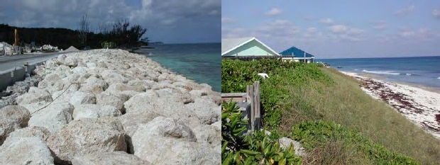 1. Revetment along West Bay Street, NP. 2. Rebuilt dune at White Sound, Elbow Cay, Abaco